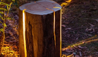 Cracked Log Lamps1