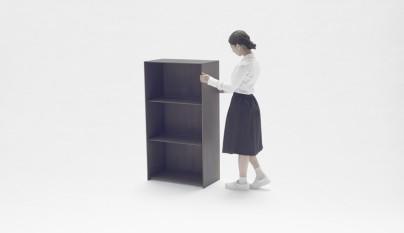 nest shelf2
