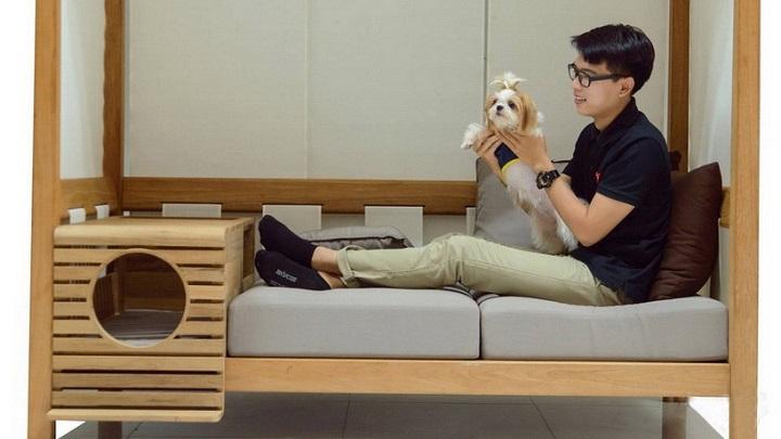 Pet sofa1