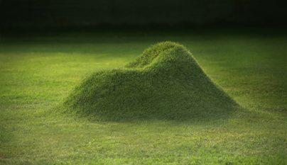 terra grass armchair1