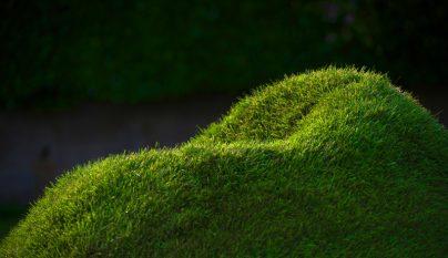 terra grass armchair2