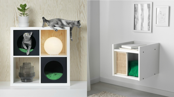 cama-kallak-gatos