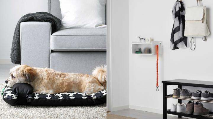 coleccion-LURVIG-perros
